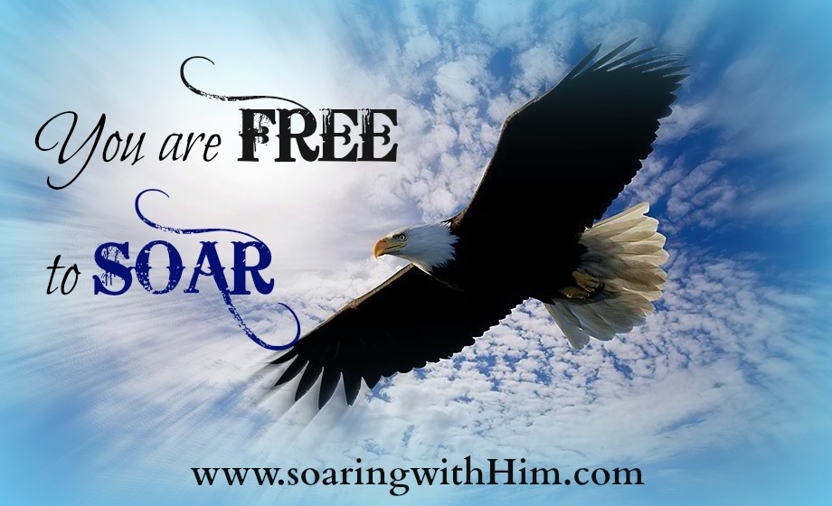 free-to-soar