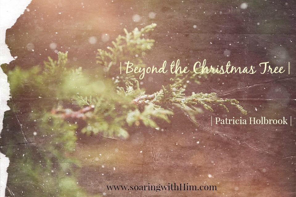 beyond-the-christmas-tree-12-24-16